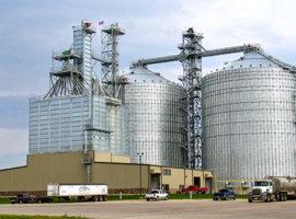 Mill Management